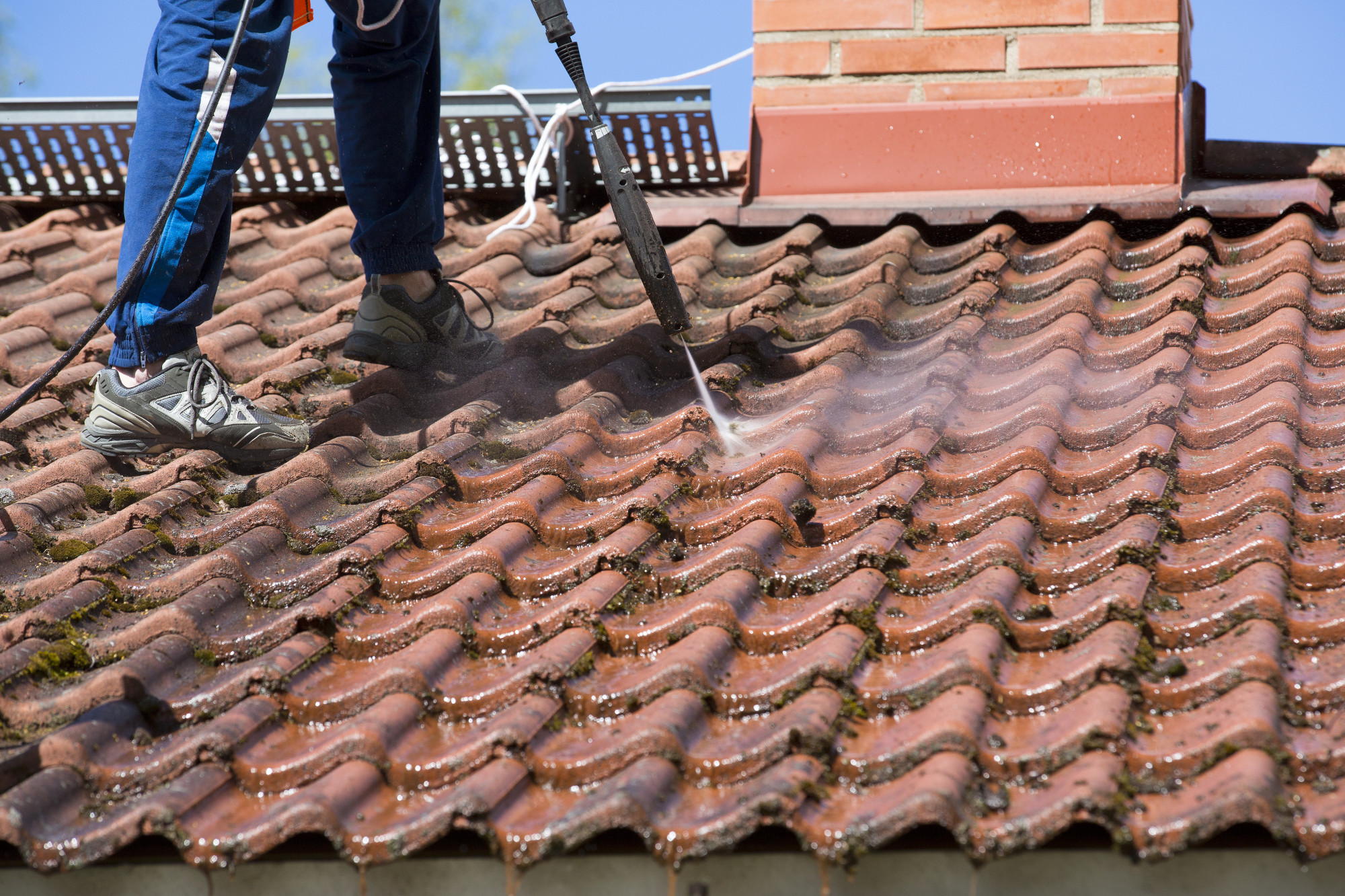 5 Essential Reasons to Schedule a Roof Cleaning
